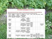Посевной календарь на 2012 год