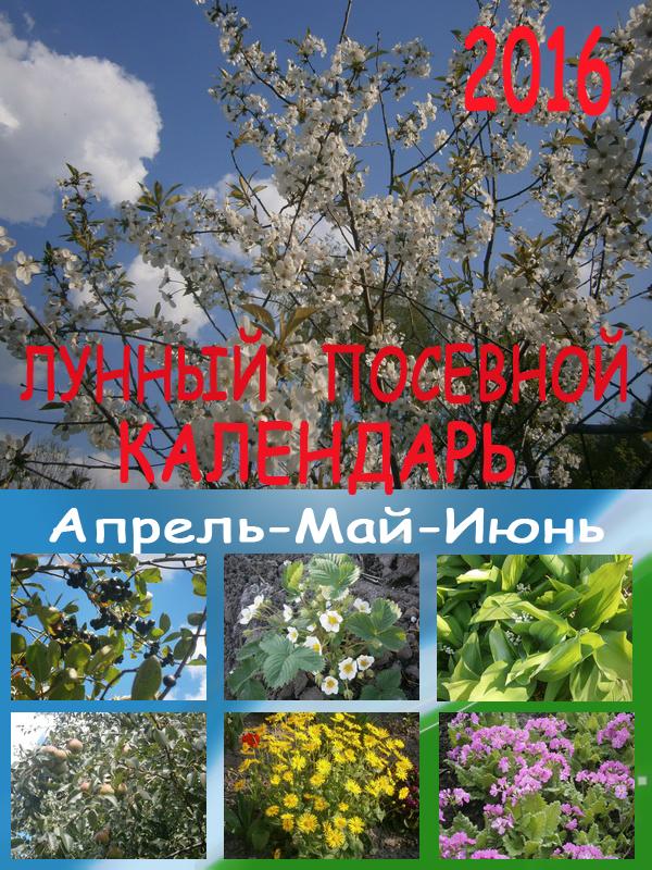 Лунный посевной календарь на 2016 год: апрель - май – июнь