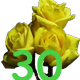 Поздравления с 30-летием