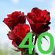 Поздравления с 40-летием