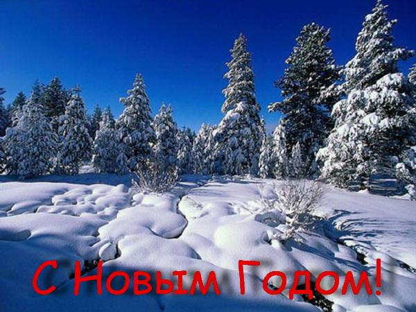 Зимние Новогодние пейзажи
