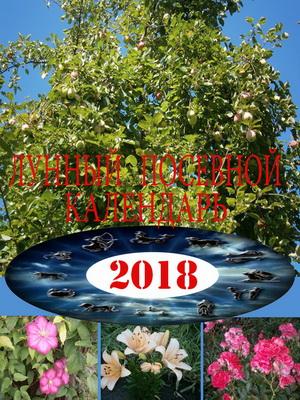 Лунный посевной календарь 2018 год