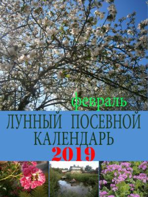 Лунный посевной календарь на 2019 год февраль