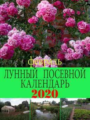 Лунный посевной календарь на 2020 год февраль