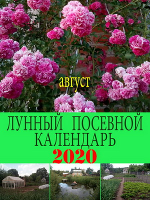 Лунный посевной календарь на 2020 год август