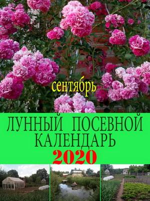 Лунный посевной календарь на 2020 год сентябрь