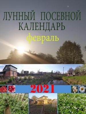 Лунный посевной календарь на 2021 год февраль